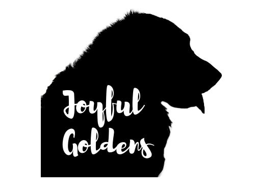 Joyful Goldens